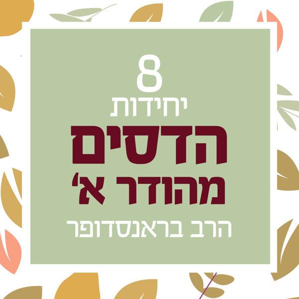 תמונה של 8 יחידות - הדס מהודר א' - הרב בראנדסופר