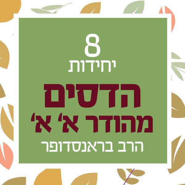 תמונה של 8 יחידות - הדס מהודר א' א' - הרב בראנדסופר
